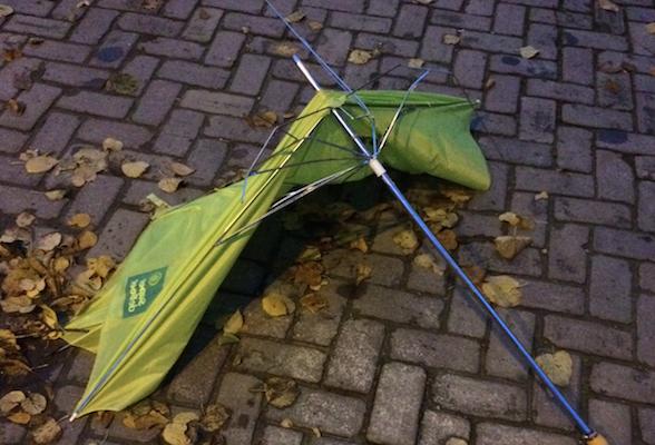 Aju paraplu 2